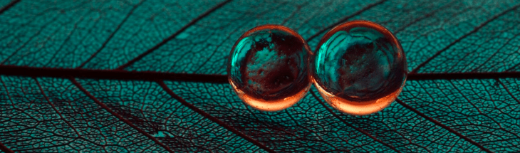 Creative macro photography at home with hydrogel beads… and